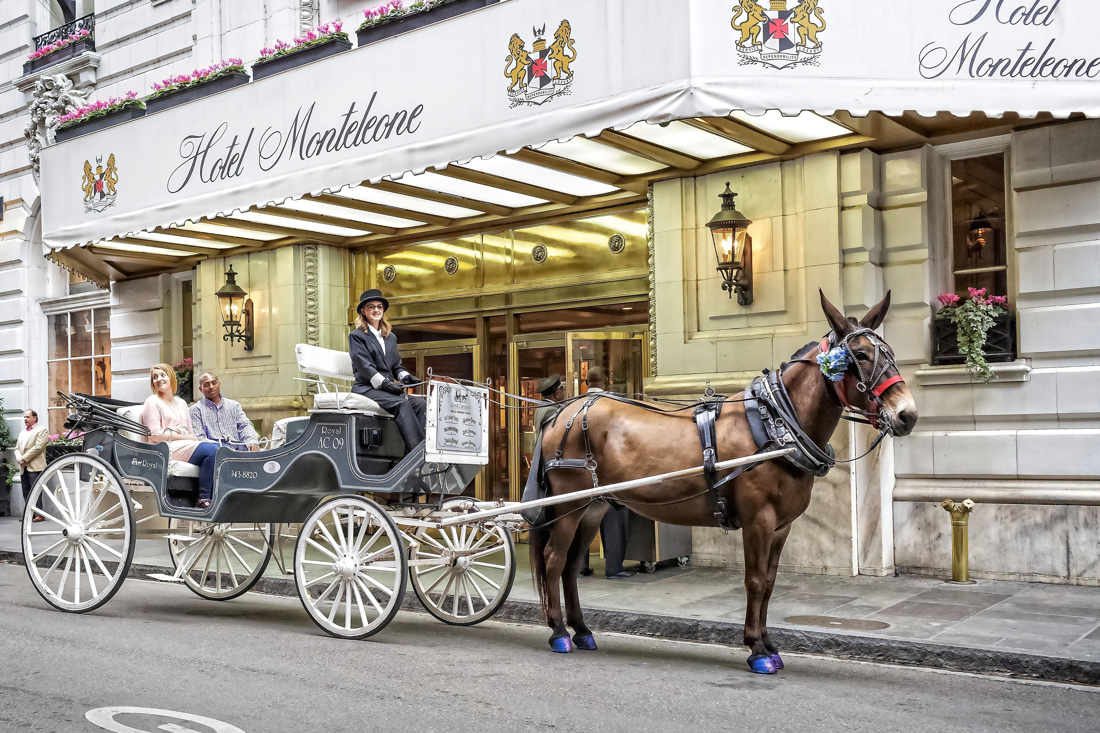 Royal Carriages VIP Private Carriage Tour of French Quarter