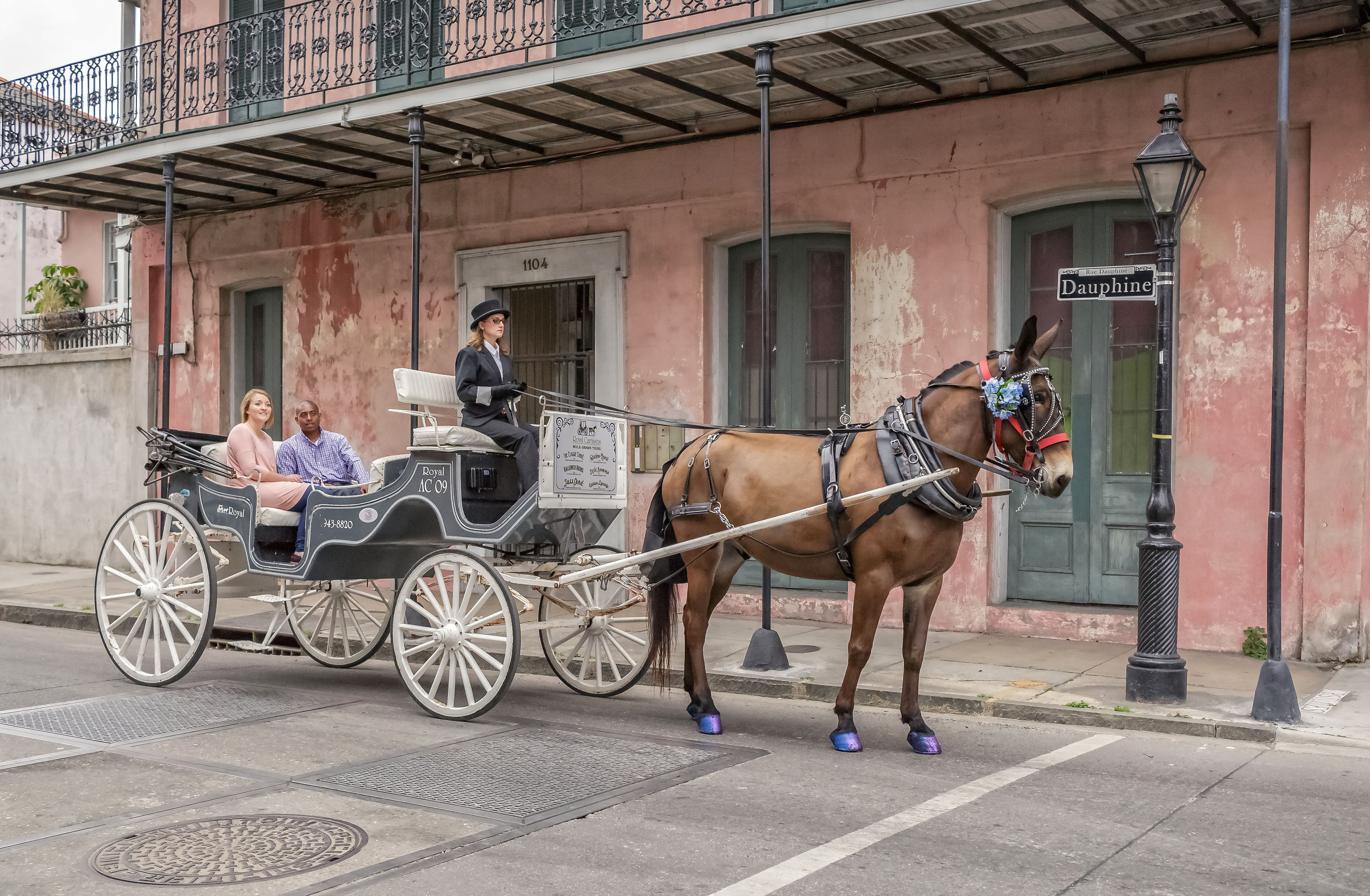 Horse-drawn carriage in the French Quarter of New Orleans