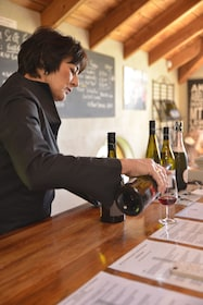 Woman pouring out red wine on the half-day wine tour in Marlborough, New Zealand