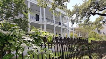 Glamourous New Orleans: Garden District & Magazine Street Walking Tour