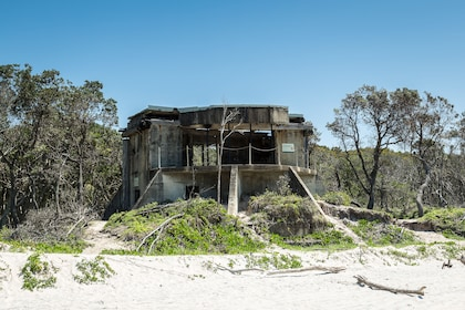Island bunkers on the Bribie Island Adventure Tour