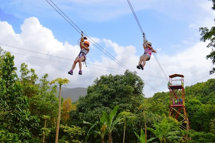 Two people ride a zip line in a jungle