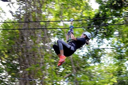 A person riding a zip line in a forest canopy