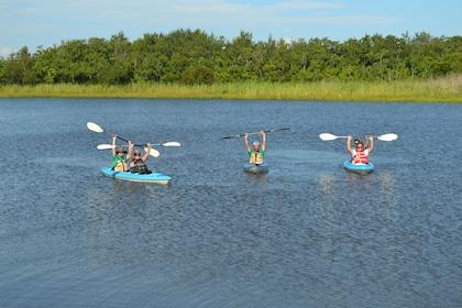 Delta Wildlife Kayak Tour