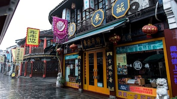Private Tour to Lingyin Temple, Meijiawu Village & Song Dynasty Street