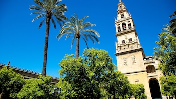 Cordoba in 3 Hours: Alcazar, Jewish Quarter & Mosque–Cathedral Walking Tour