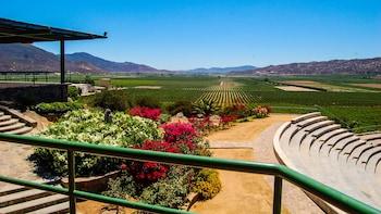 Weinverkostungspass in Guadalupe