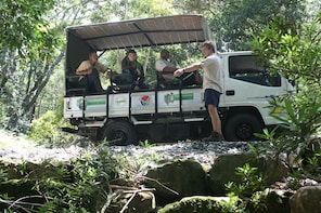 Discover nature at its purest on the Woodcutters Journey