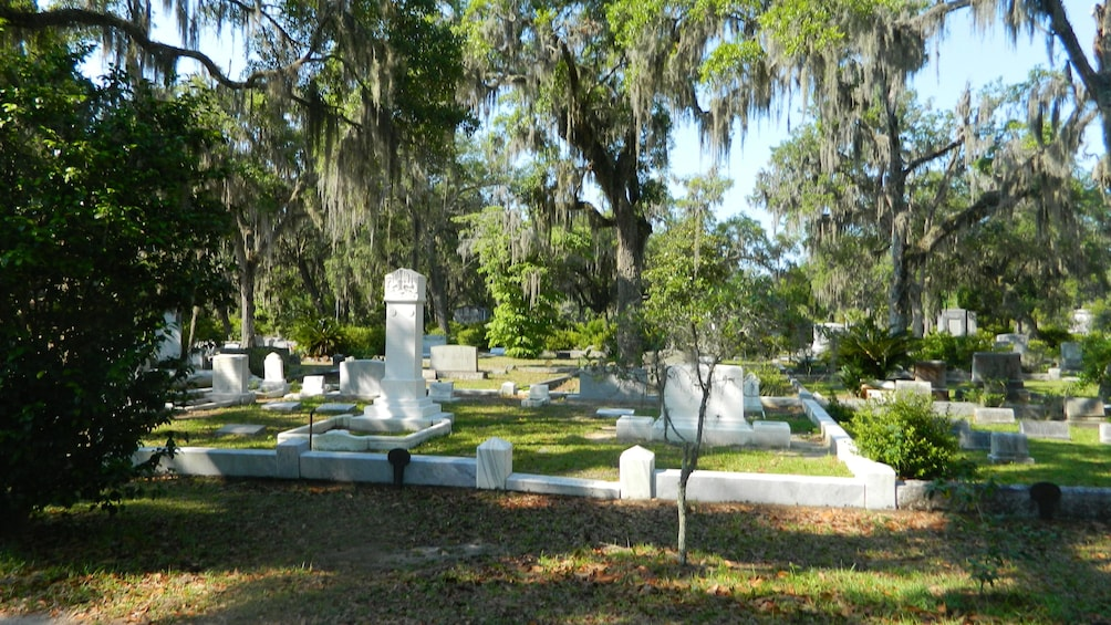Show item 1 of 1. Bonaventure Cemetery headstones and markers