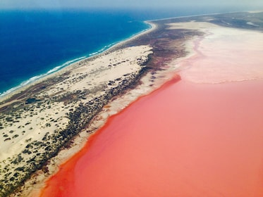 Pink water in Australia