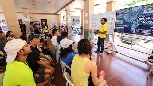 Class to prepare students to swim with Whale Sharks