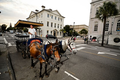 Carriage traveling down street in Charleston