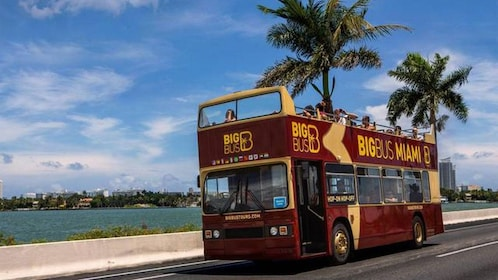 Hop-on hop-off bus in Miami