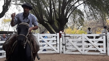 Authentic Gaucho Fair in the Pampas