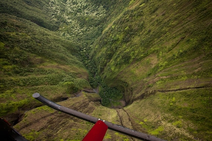 Aerial view of Hawaiian forest