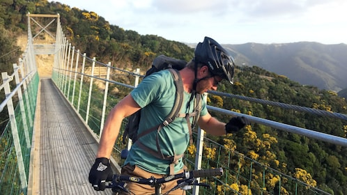 Man looking over bridge from bike in Wellington