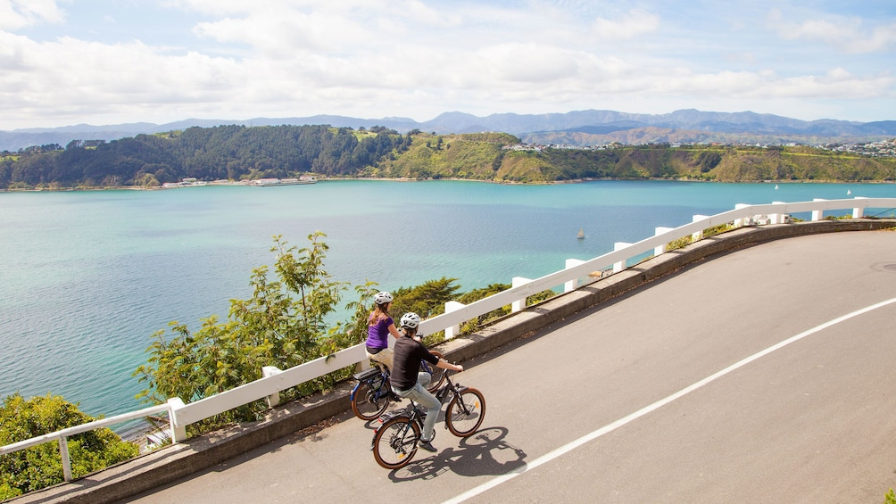Show item 2 of 5. Couple bicycles along road with overview of water in Wellington