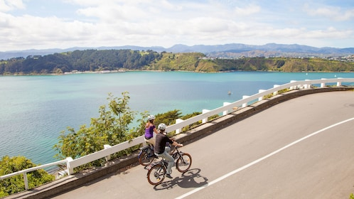 Couple bicycles along road with overview of water in Wellington