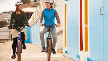 Full-Day Bicycle Rental in Wellington
