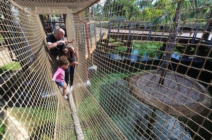 Alligator Hanging Bridge.jpg