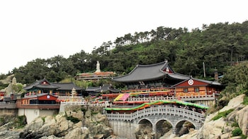 Full-Day Busan Sightseeing Tour with Haedong Yonggungsa Temple
