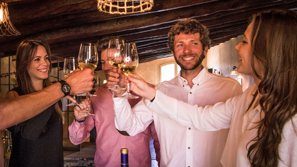 Group toasting with wine glasses at a vineyard in Barcelona