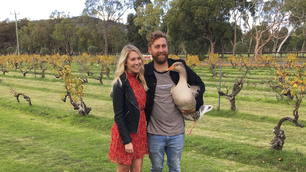 Show item 9 of 9. Premium Winelovers Experience - Full Day Swan Valley Tour