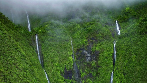 View of misty forest and waterfalls of Hawaii