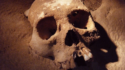 Close up of human skull from ancient cave society in Belize