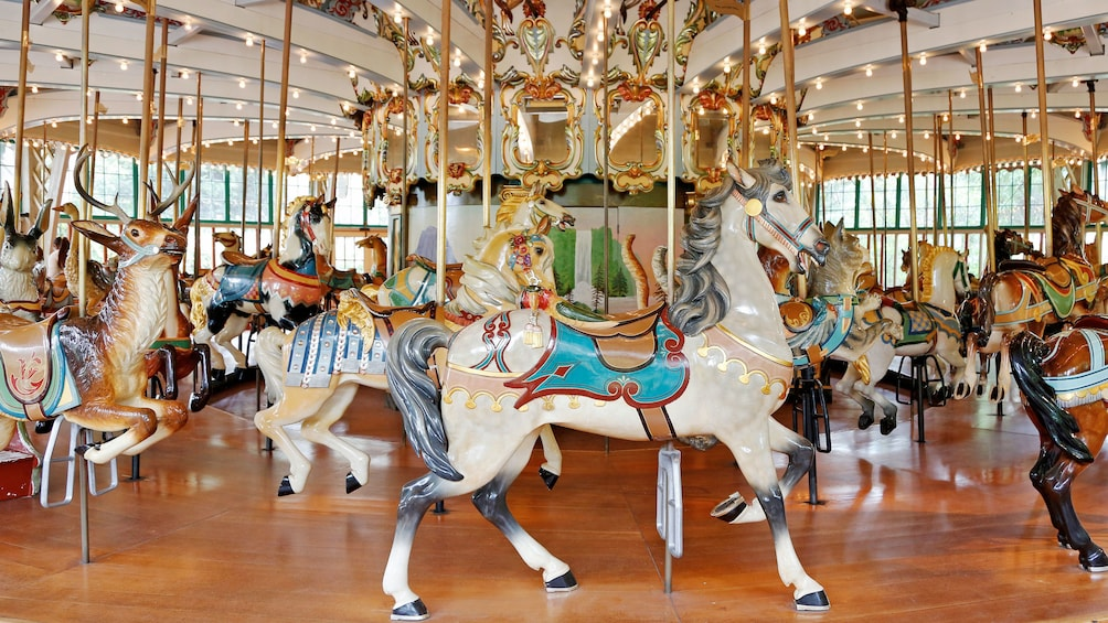 Show item 5 of 5. Carousel at the San Francisco Zoo