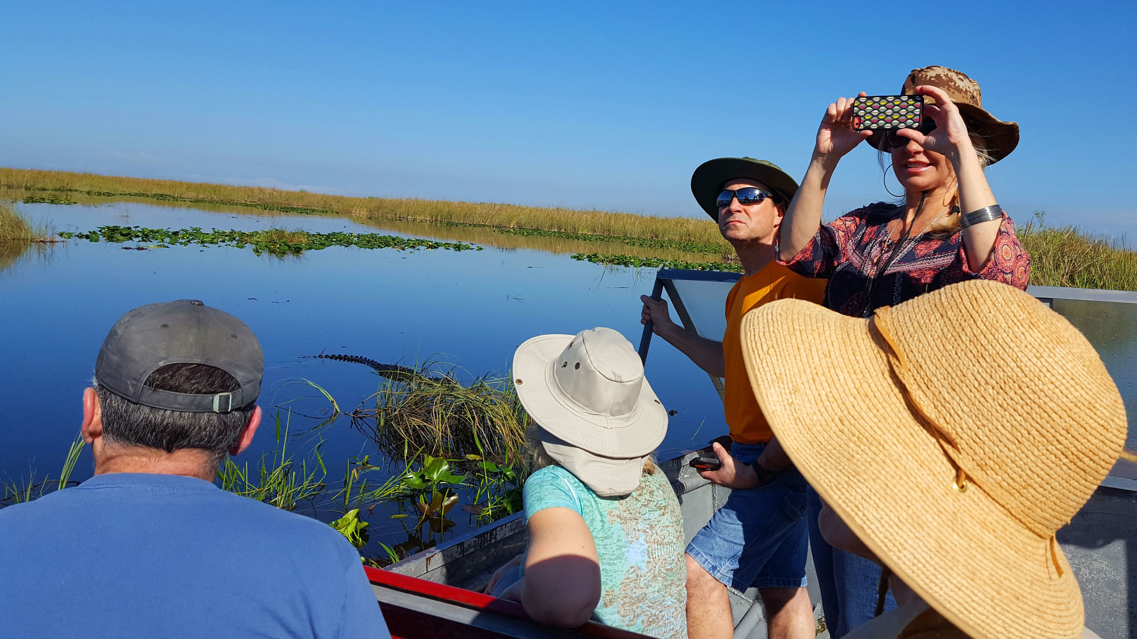 Everglades National Park Nature Walk with a Naturalist & Air Boat Ride