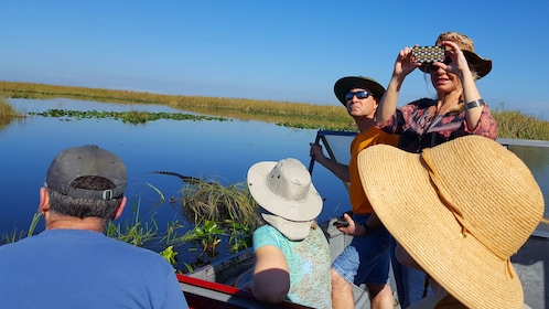 Tour group on an airboat in the Everglades