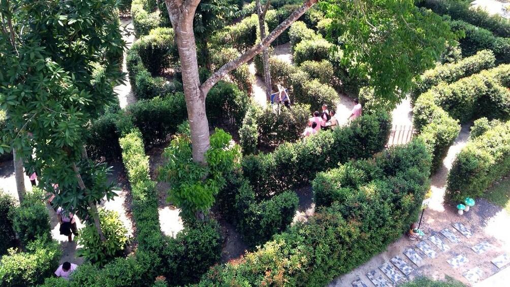 แสดงภาพที่ 2 จาก 4 Hedge maze in Phuket