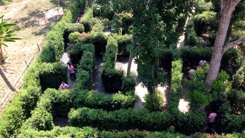 แสดงภาพที่ 3 จาก 4 Hedge maze in Phuket