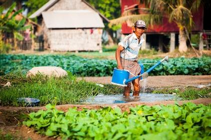 Local man on a farm in Cambodia