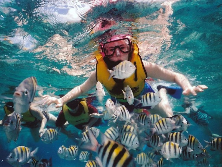Show item 2 of 2. A person snorkeling with fish in tropical waters