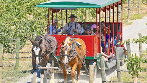 Visitors on the Horse Drawn Trolley Winery Shuttle in Temecula, CA