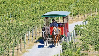Horse-Drawn Trolley Winery Tour