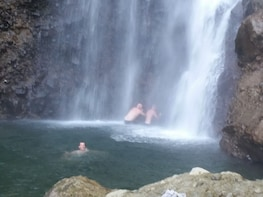 Show item 3 of 3. Middleham Falls and Ti'tou Gorge Half-Day Excursion