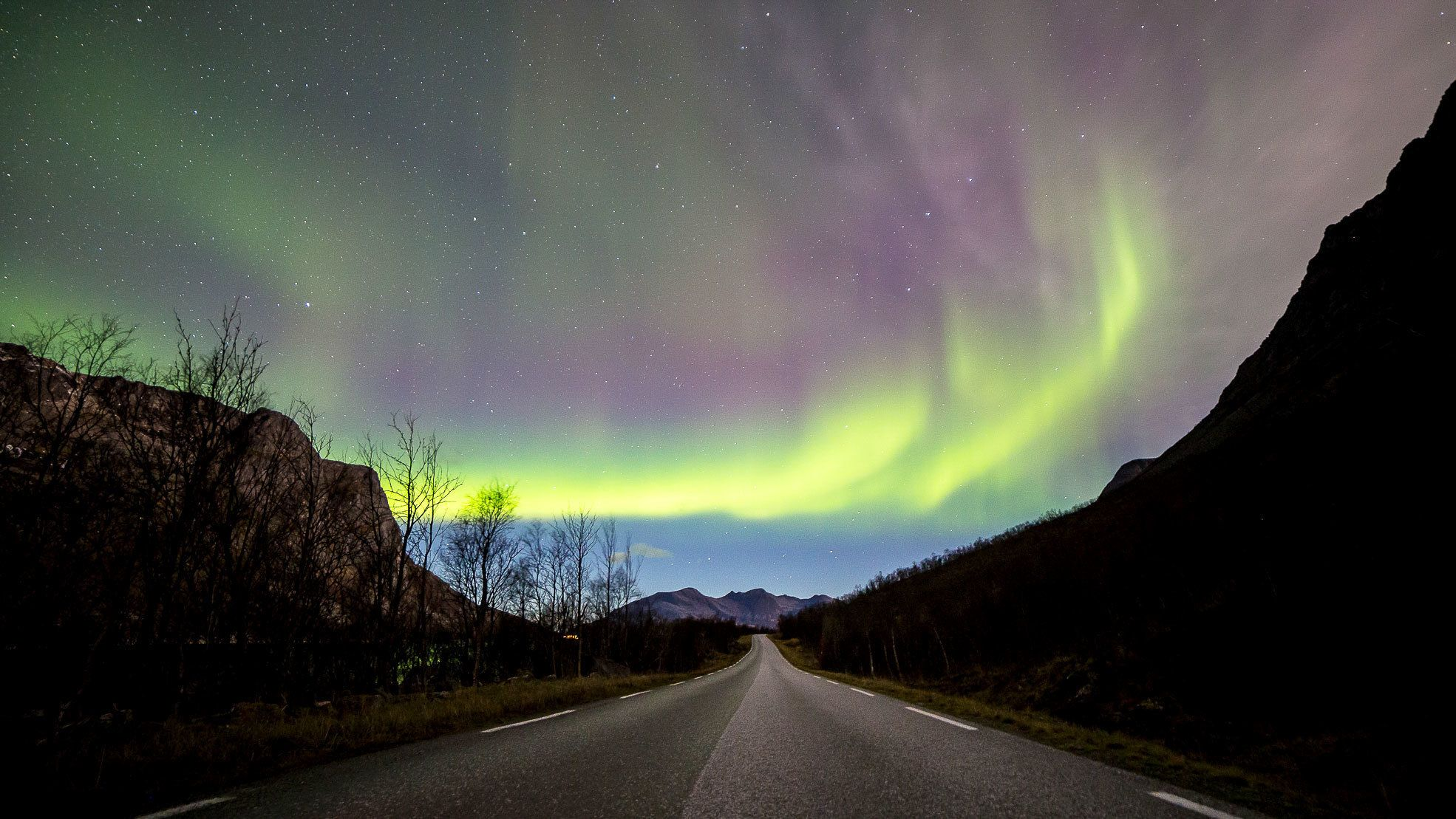 Aurora borealis over road in Tromso