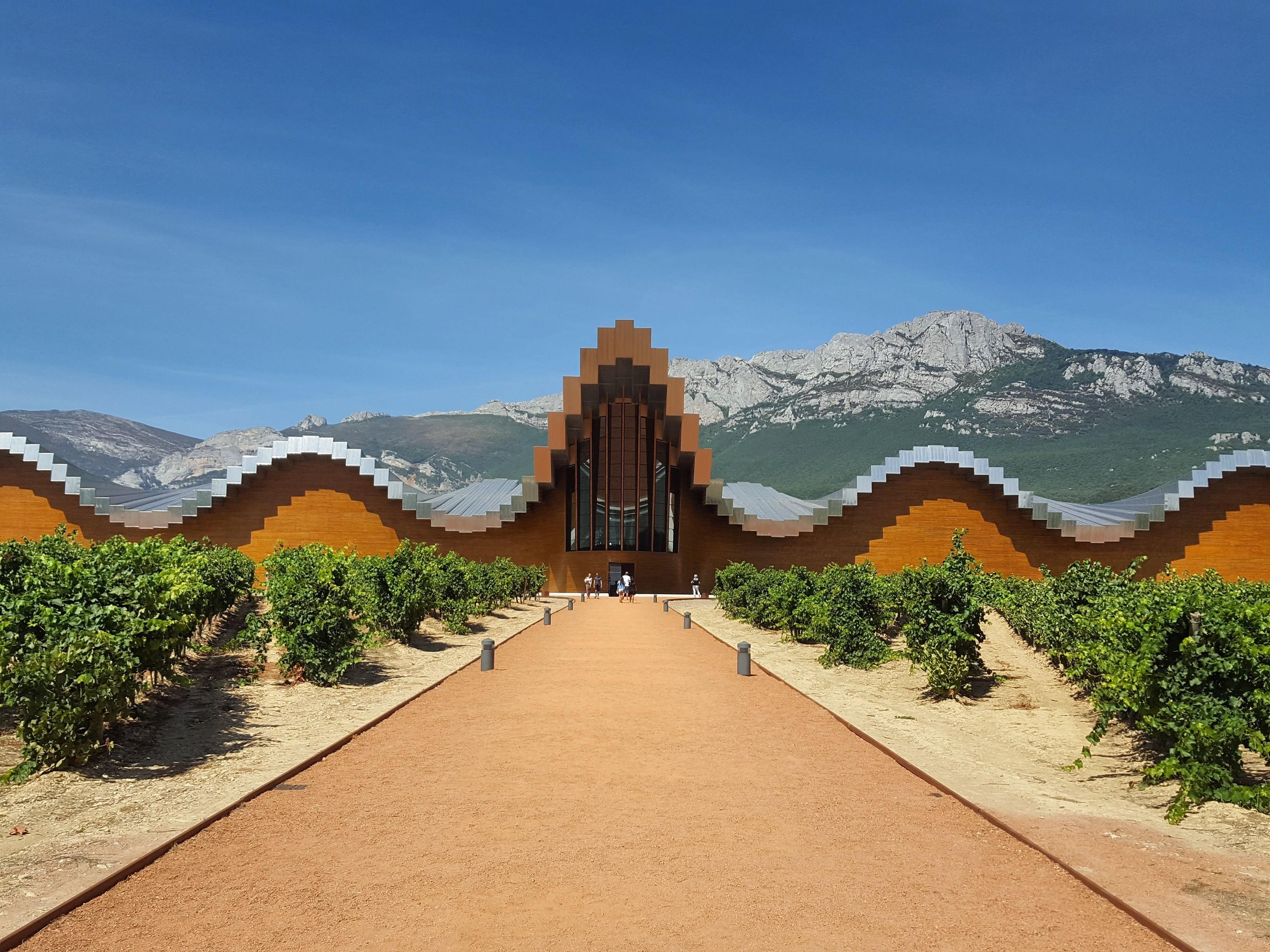Rioja Wineries Tour from San Sebastian with lunch