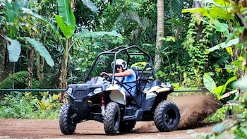 Off-Road Jungle Buggy Adventure