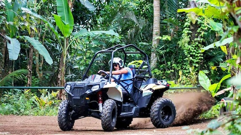 Jungle Buggies in Bali, Indonesia