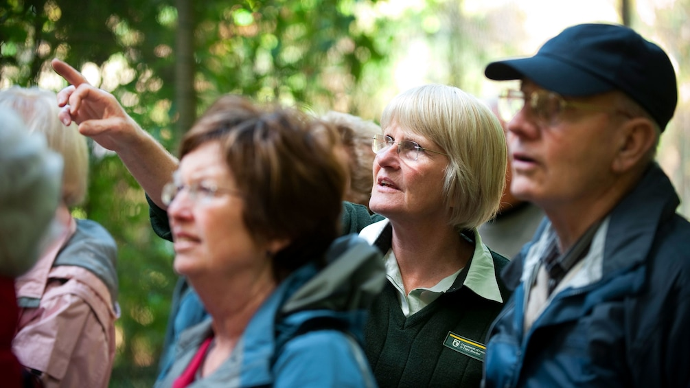 Guide talking to group at Pukaha Mount Bruce Wildlife Centre