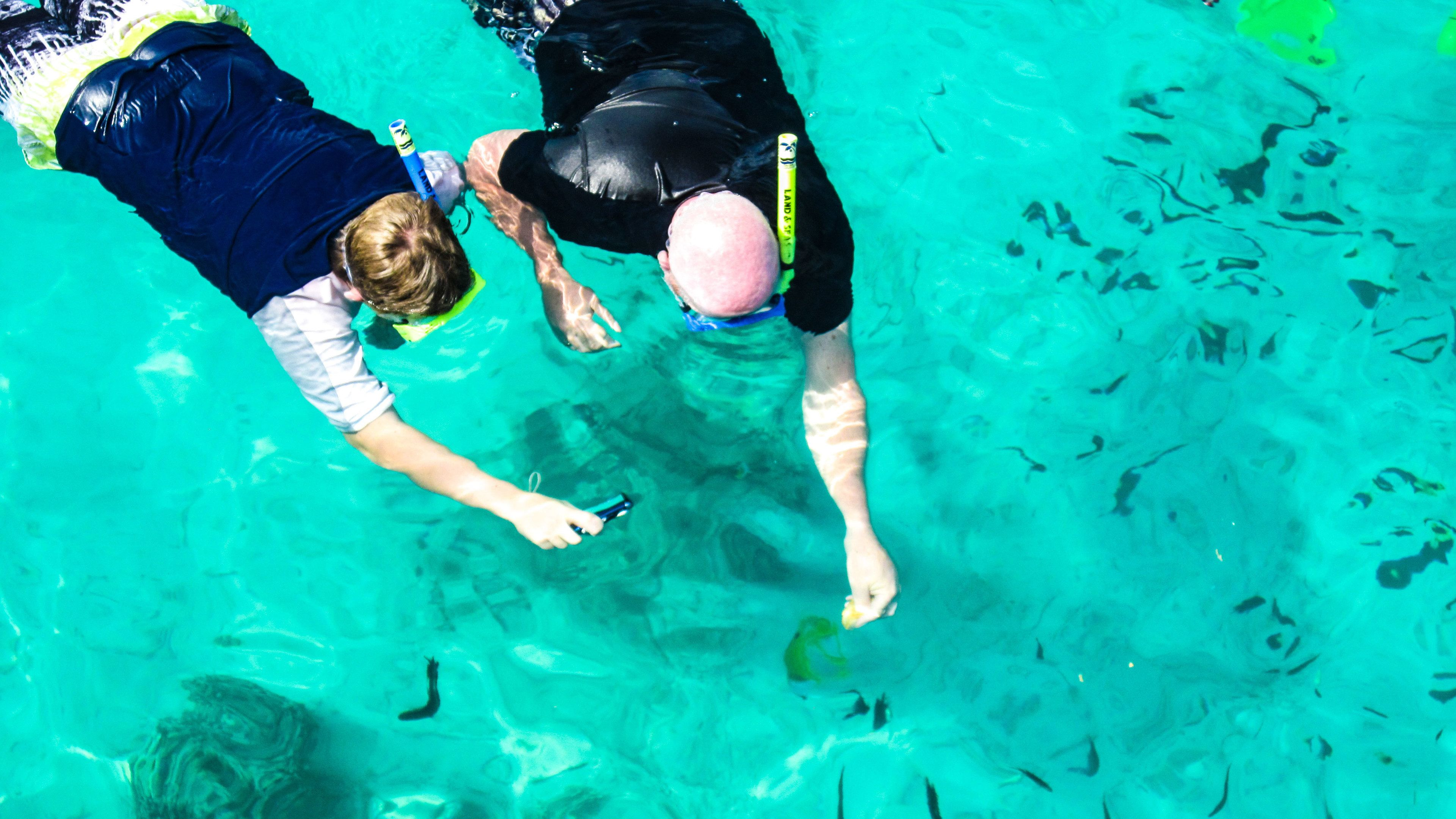 Father and son snorkeling on Vanuatu Island