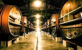 Exclusive VIP Tour Noilly Prat Vermouth Cellar, with tasting