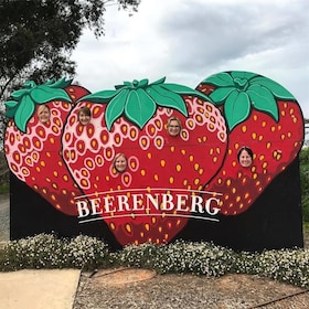 Strawberry sign at Beerenberg