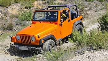 Jeep 4x4 Safari