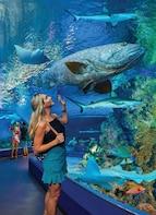 Boletos para Cairns Aquarium