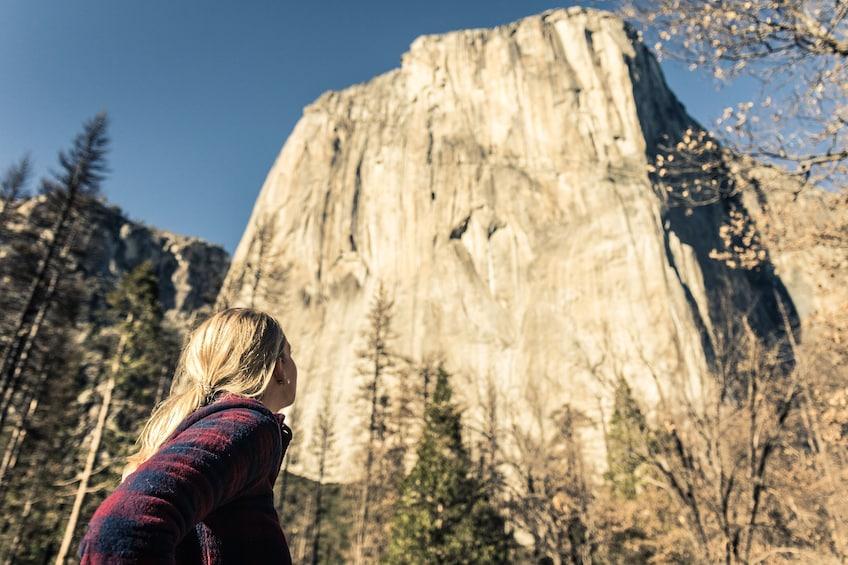 Show item 3 of 10. Total Yosemite Experience from San Jose